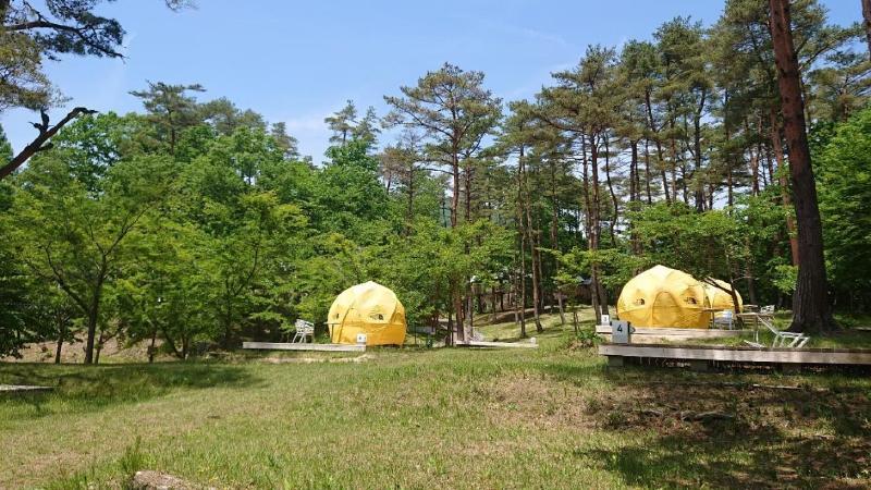 楽しそうなキャンプ